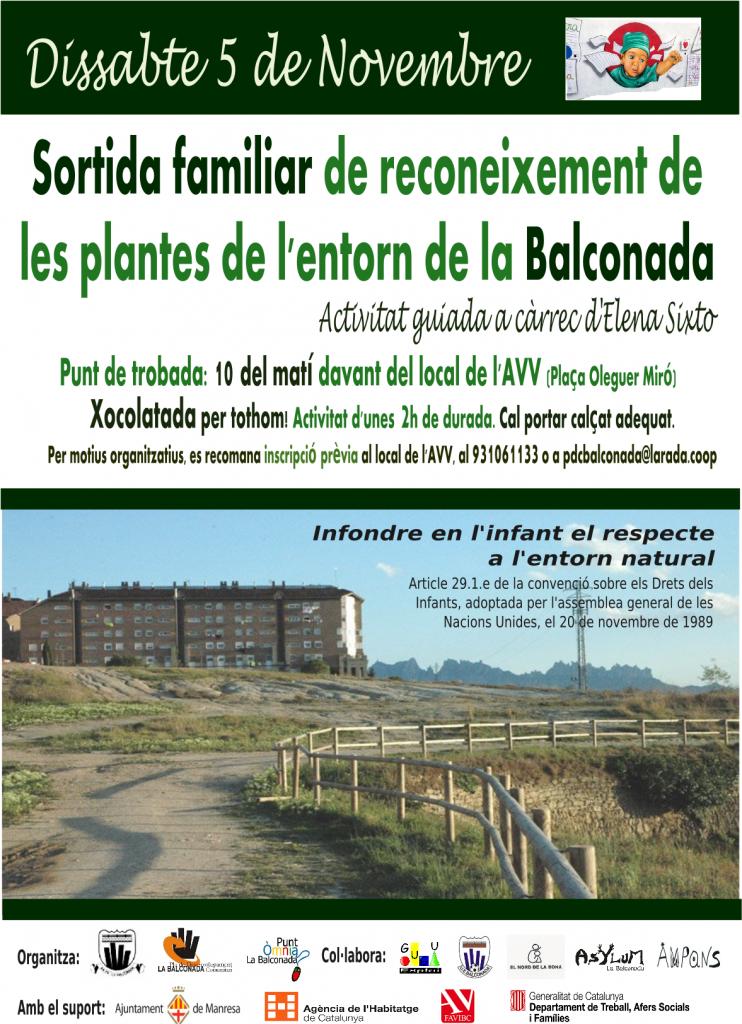 (5 de Novembre) Sortida familiar de reconeixement de les plantes de l'entorn de la Balconada